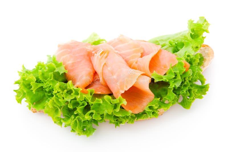 Pesci e lattuga fresca immagini stock