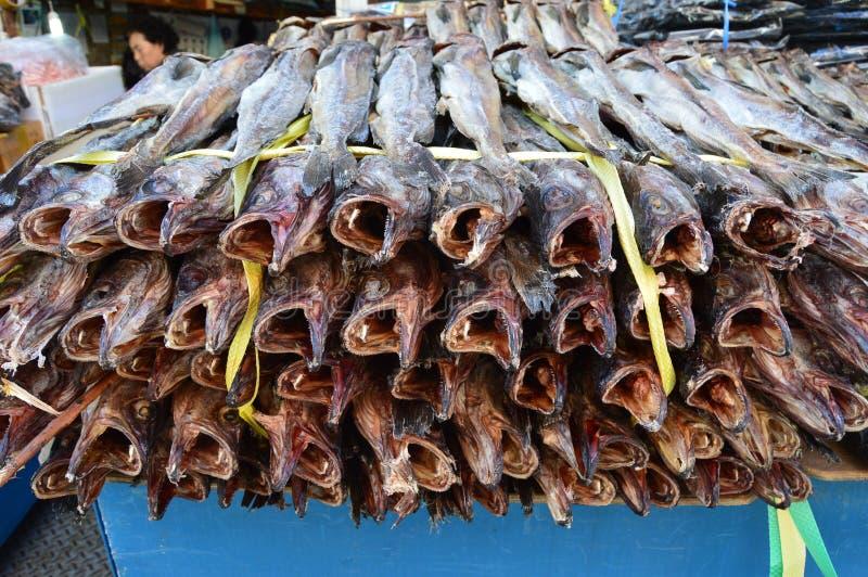 Pesci essiccati al mercato di Jagalchi, Busan, Corea del Sud fotografie stock