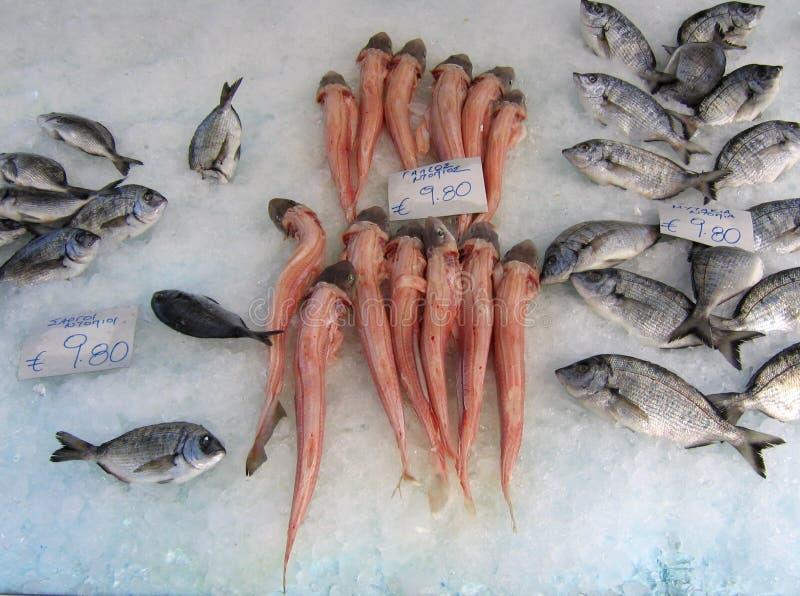 Pesci freschi su ghiaccio a Atene, Grecia fotografia stock