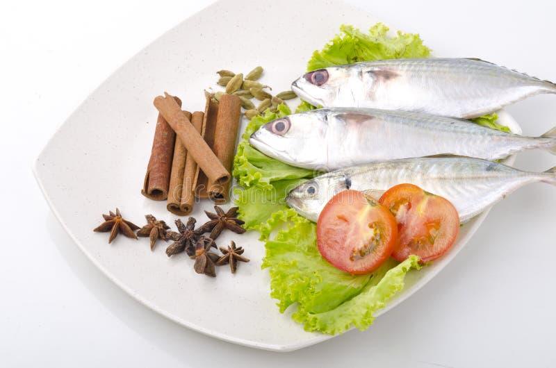 Pesci, verdura e spezie fotografie stock