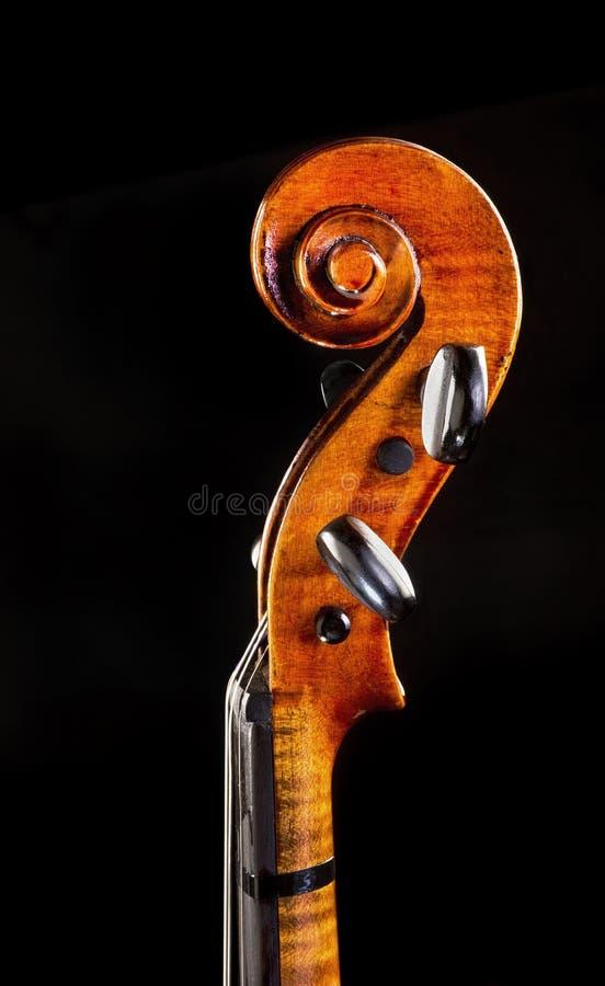 Pescoço do violino foto de stock