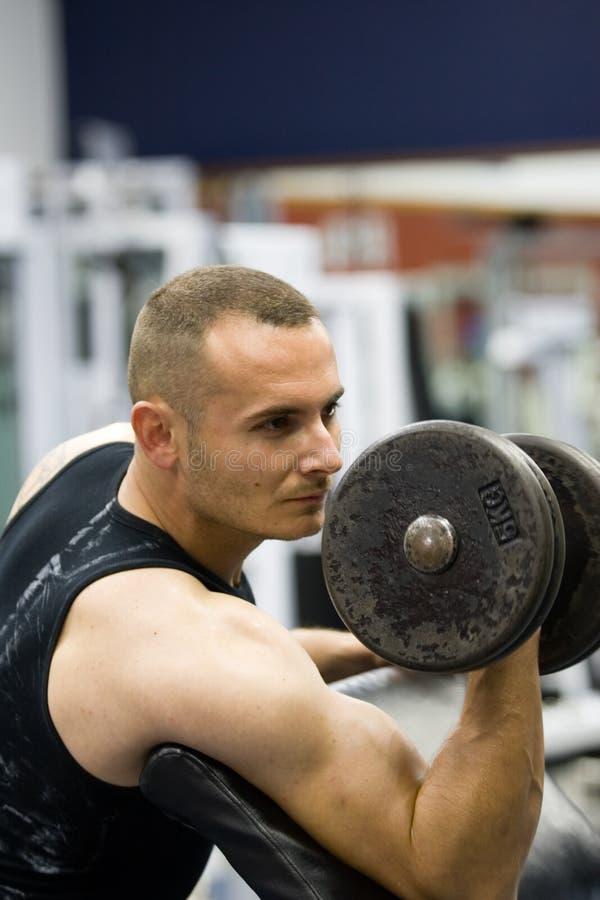 Pesi di addestramento di ginnastica di forma fisica immagine stock libera da diritti