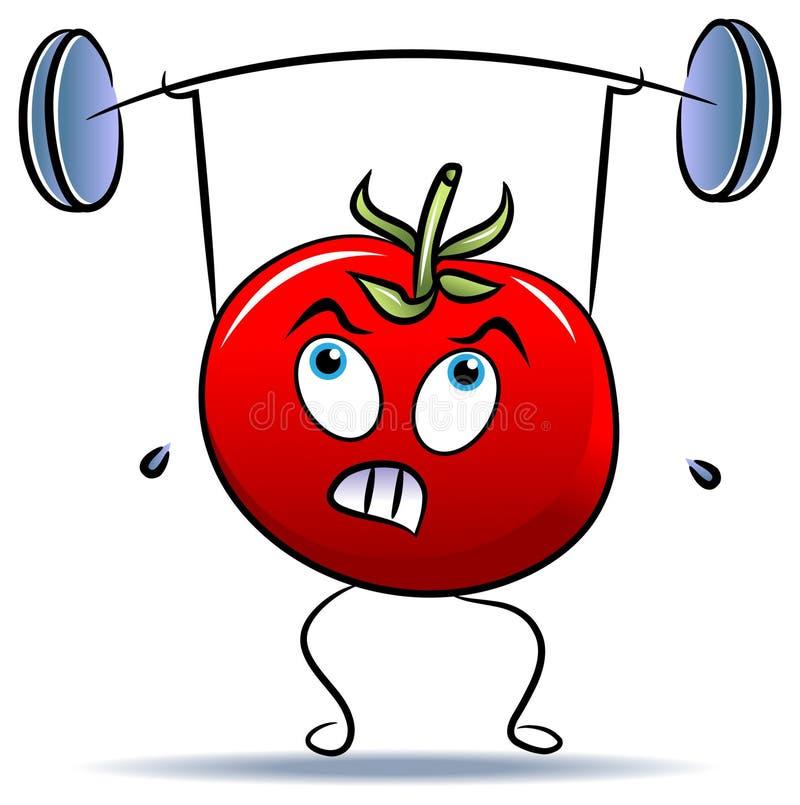 Peso-levantador del tomate ilustración del vector