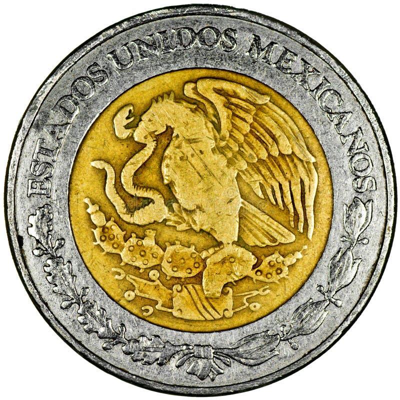 Peso messicano immagine stock