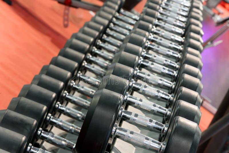 Pesos de las pesas de gimnasia alineados en un estudio de la aptitud imagen de archivo libre de regalías