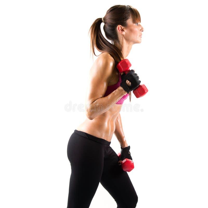 Pesos de levantamento da jovem mulher apta e desportiva sobre o fundo branco imagem de stock