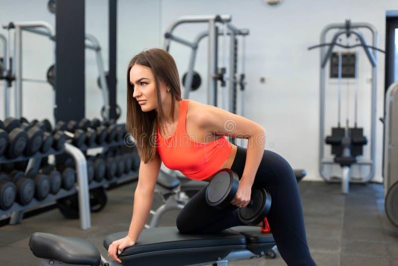 Pesos de levantamento da mulher apta consider?vel do retrato no banco no gym imagem de stock