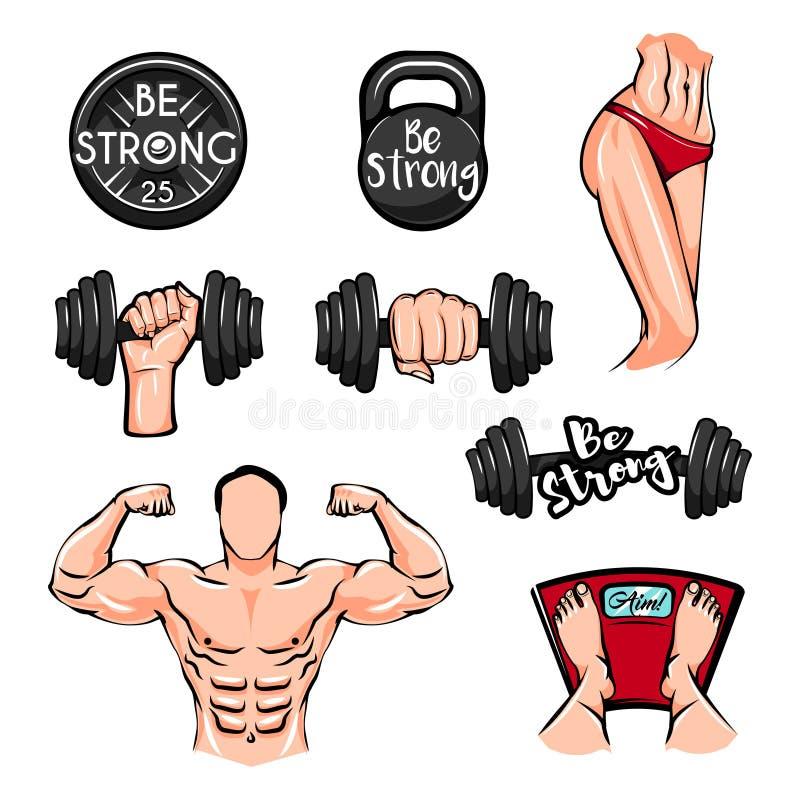 Pesos, halterofilista, corpo da aptidão, peso Kettlebell Ícones do gym da aptidão Vetor ilustração stock