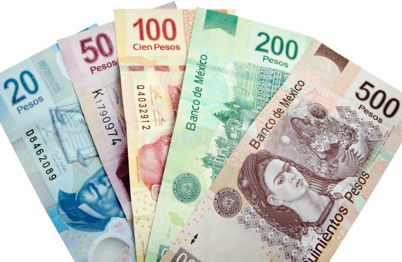 Pesos mexicanos aislados imágenes de archivo libres de regalías