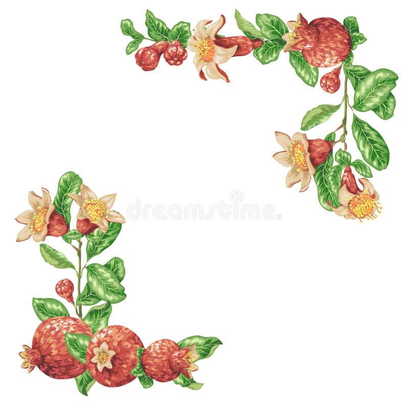 Pesque el marco de la frontera con caña con las frutas frescas de la granada del jugo en vector stock de ilustración