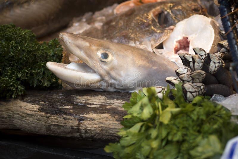 Pesque na venda em um peixe Mogners no mercado da cidade do ` s de Londres, Reino Unido foto de stock royalty free
