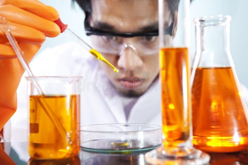 Pesquisa da biotecnologia fotografia de stock royalty free