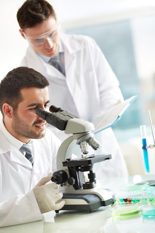 Pesquisa do laboratório imagem de stock