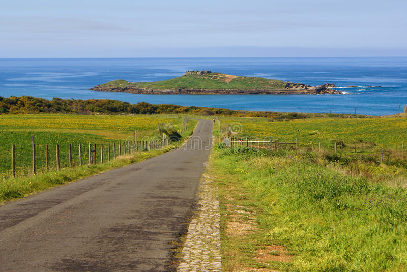 Pessegueiro海岛,波尔图Covo,葡萄牙 免版税库存图片
