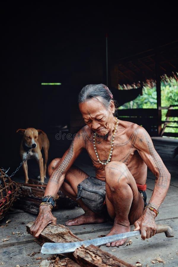 Pessoa idosa tribal Toikot que desbasta alguma madeira em sua casa da selva imagem de stock