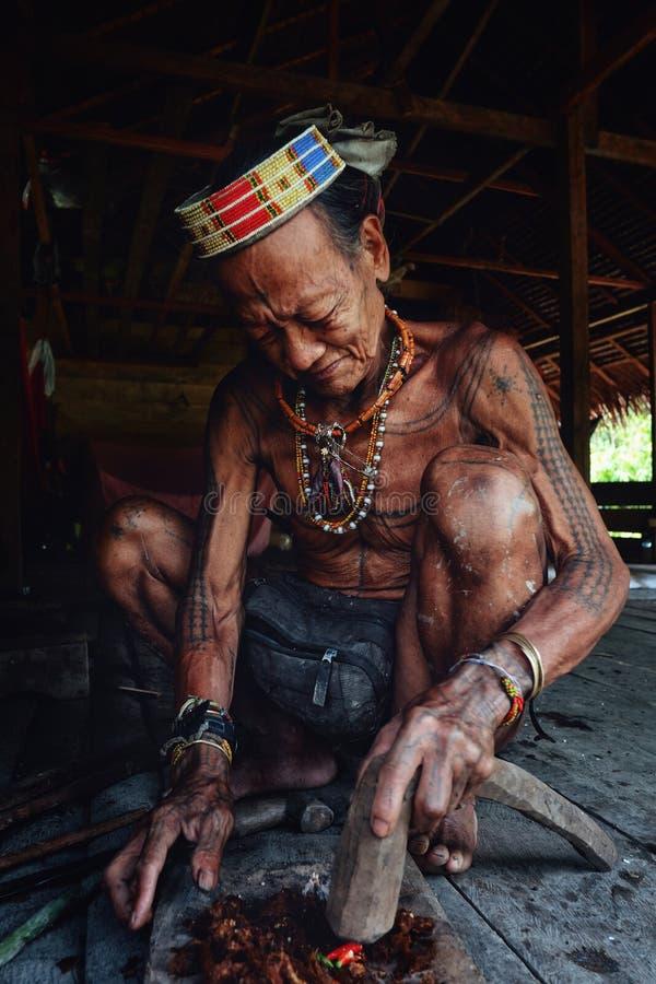 Pessoa idosa tribal Toikot que prepara o veneno em sua casa da floresta úmida imagem de stock royalty free