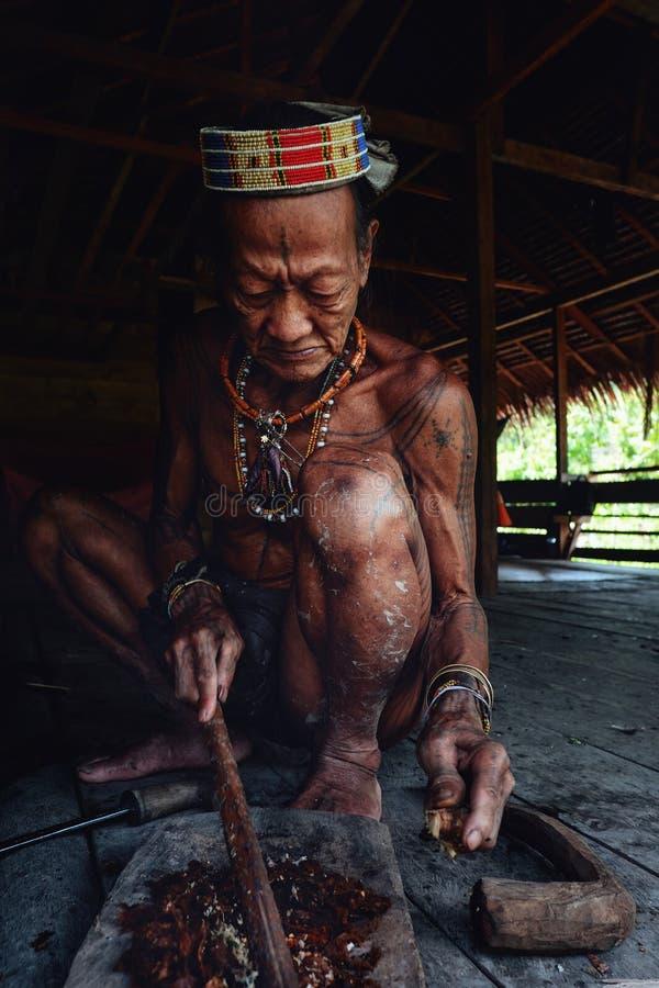 Pessoa idosa tribal Toikot que prepara o veneno em sua casa da floresta úmida fotos de stock