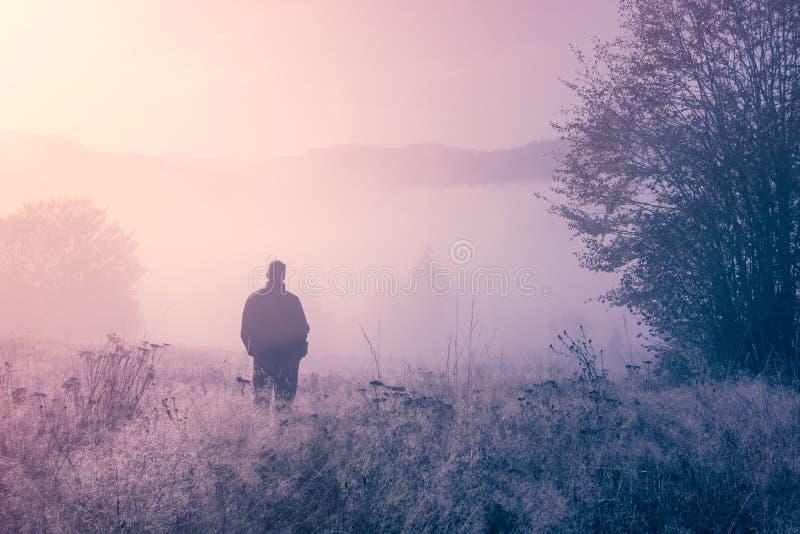 Pessoa só na névoa da manhã. fotos de stock royalty free