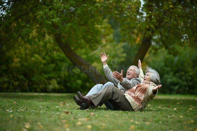 Pessoas adultas felizes imagem de stock royalty free