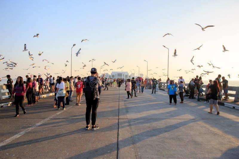 Pessoas ou viajantes vêm ver aves marinhas voando no mar em Bang poo, Samutprakan, Tailândia foto de stock