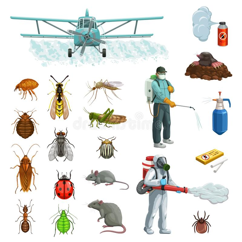 Free Pest Control Cartoon Set With Pest Insects, Rodent Stock Photo - 192388420