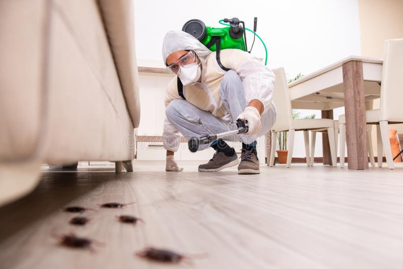 The pest control contractor working in the flat. Pest control contractor working in the flat royalty free stock photo