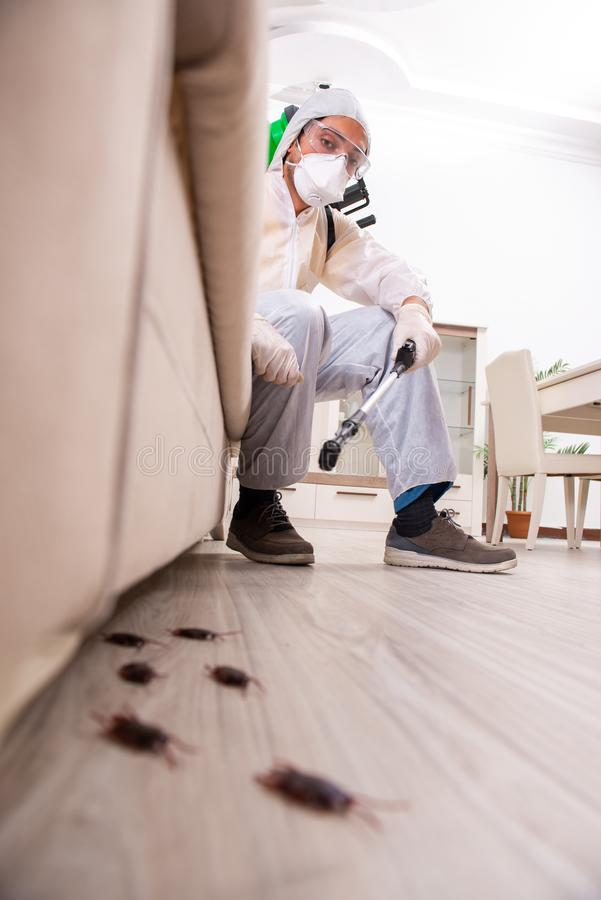 The pest control contractor working in the flat. Pest control contractor working in the flat royalty free stock image