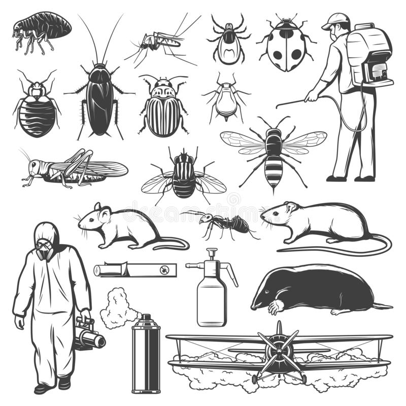 Free Pest Control Exterminator, Insect And Rodent Icons Stock Photo - 165038240