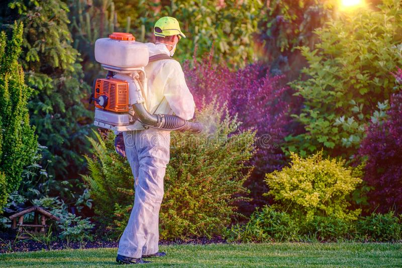 Pest Control Garden Spraying. By Professional Gardener Who Wearing Safety Wearing royalty free stock photos