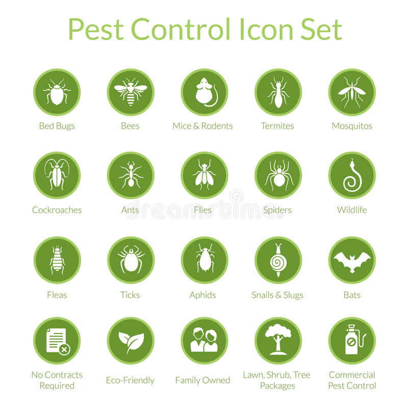 Pest Control Icon set. Vector icon set with insects like flies, cockroaches, bed bugs, spiders and termites for pest control companies