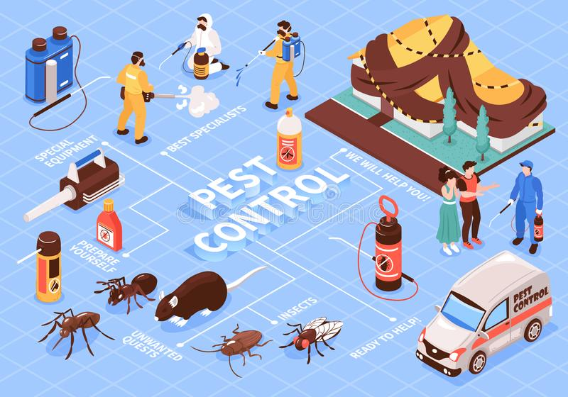 Pest Control Isometric Flowchart. Pest control home office disinfection service isomeric flowchart with professional team equipment car insect rats vector royalty free illustration