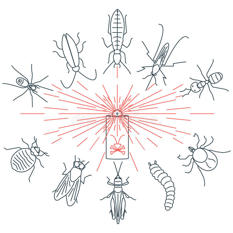 Pest control set. Pest control line icon set with insects-cockroach, tick, bedbug, fly, mosquito, spider, termite, ant, grub, locust. Linear design elements for vector illustration