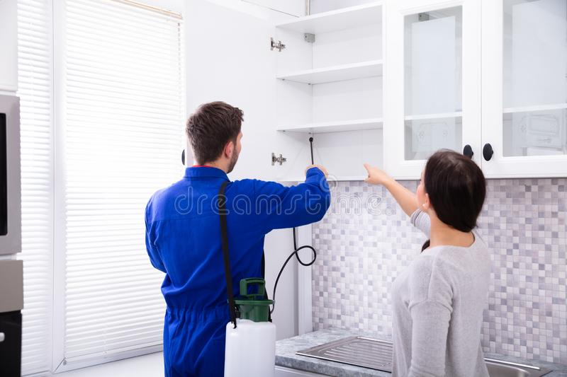 Pest Control Worker Spraying Insecticide On Shelf stock photo