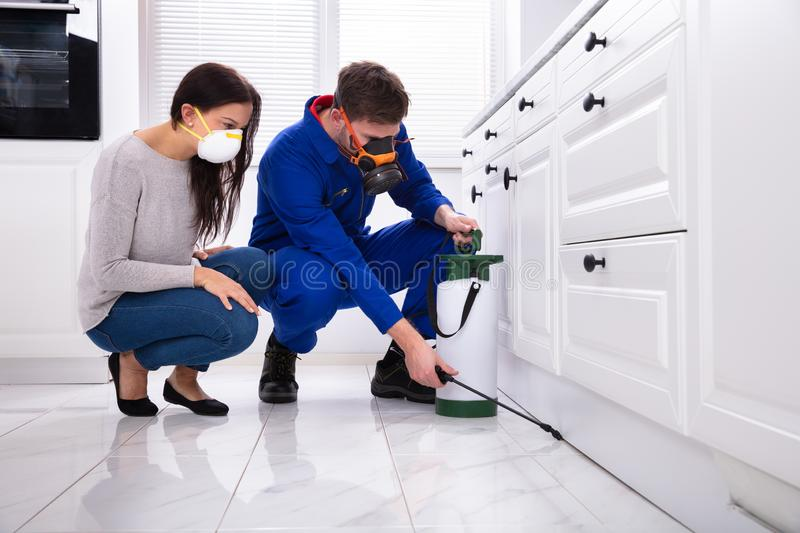 Pest Control Worker Spraying Pesticide On Wooden Cabinet. Woman Looking At Male Pest Control Worker Spraying Pesticide On Wooden Cabinet stock images