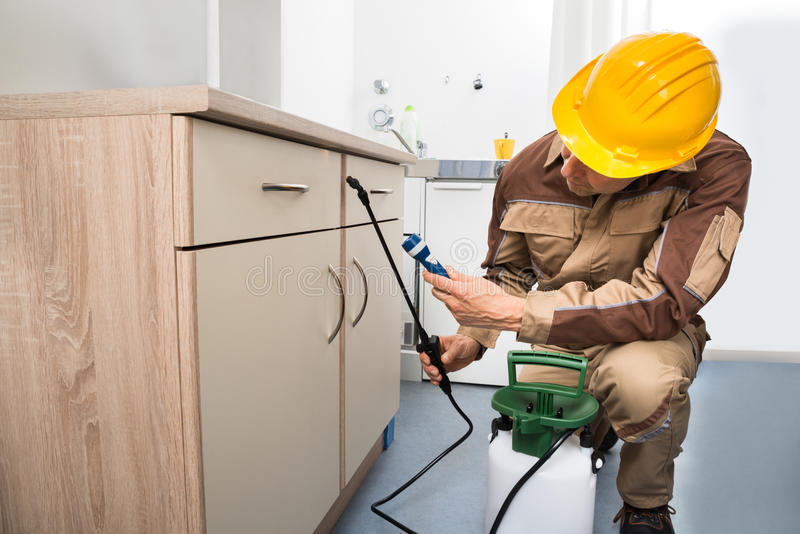 Pest control worker spraying pesticides. On Wooden Drawer stock photography
