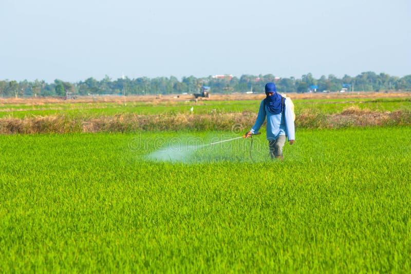 Pesticida de rociadura del granjero fotos de archivo