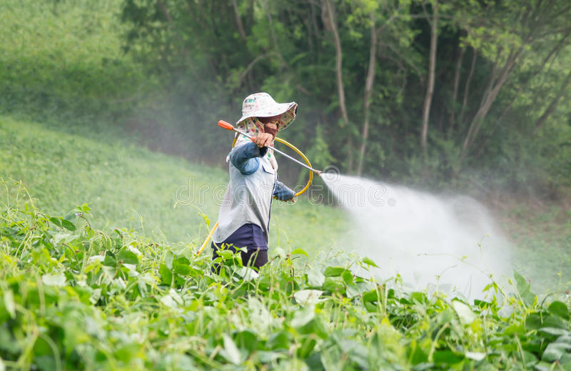 Pesticidas de rociadura fotografía de archivo libre de regalías