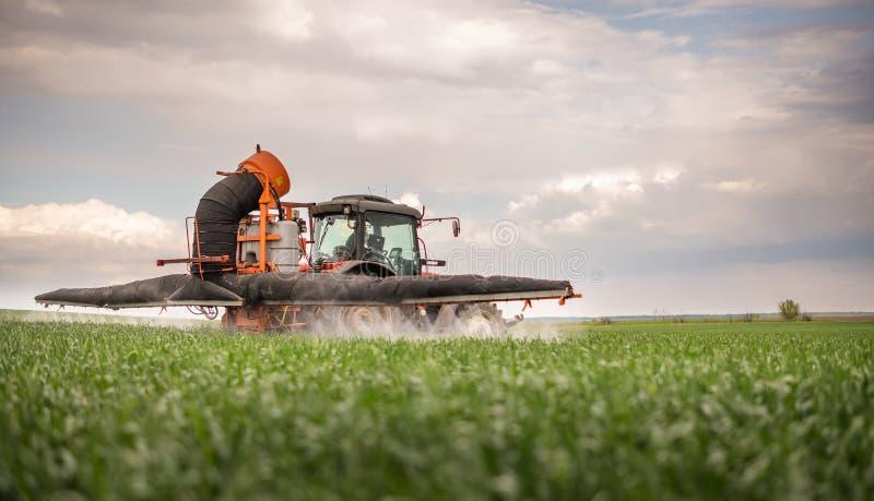 Pesticidas de rociadura del tractor en el campo de trigo foto de archivo libre de regalías