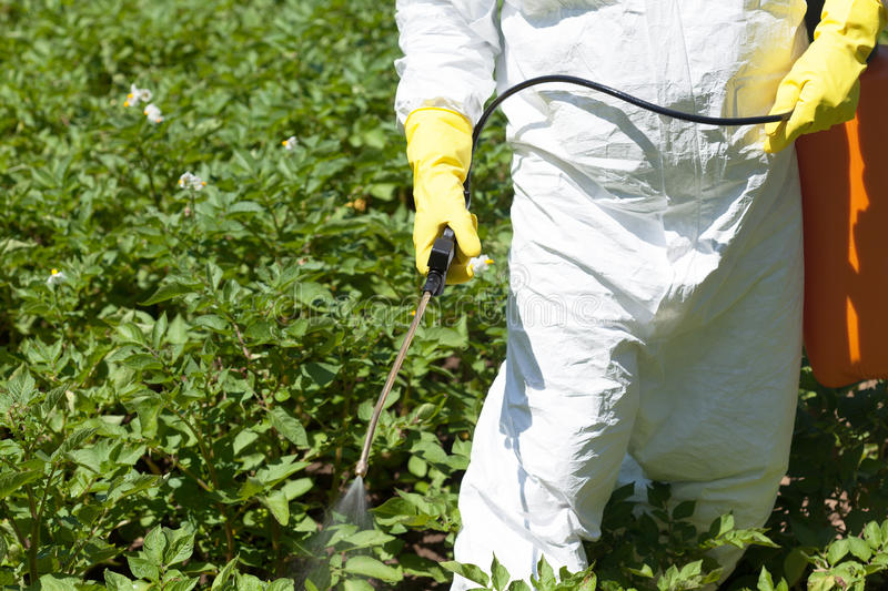 Pesticide spraying. Agricultural pollution. royalty free stock photo