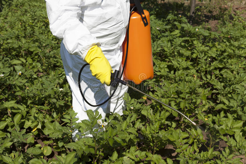 Pesticide spraying stock photography