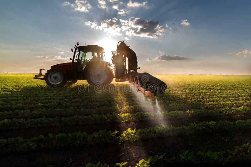 Pesticides de pulvérisation de tracteur sur le gisement de soja images libres de droits