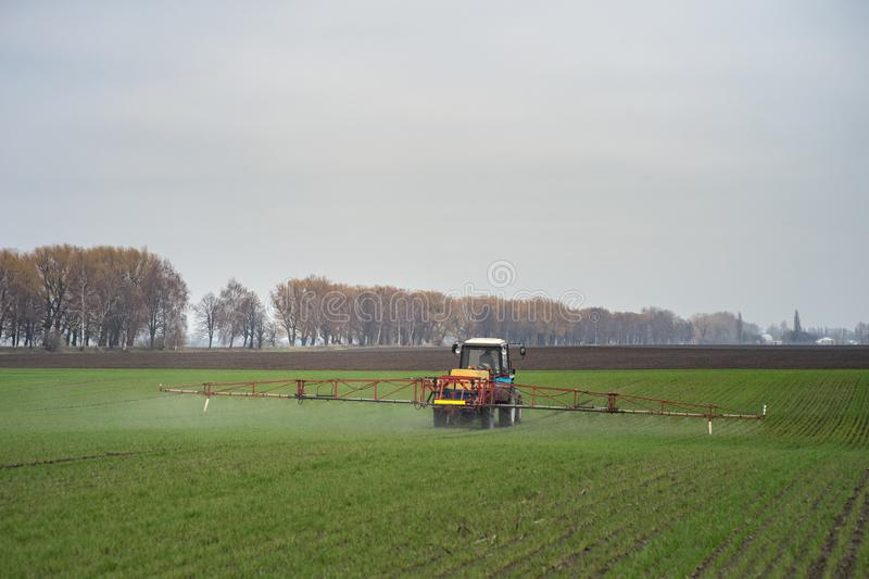 Pesticides de pulvérisation de tracteur sur le grand champ vert avec le jeune grain photographie stock libre de droits