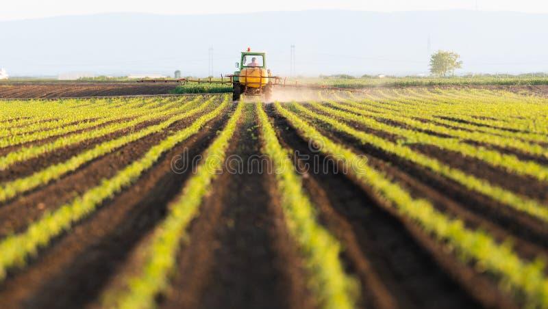 Pesticides de pulv?risation de tracteur au champ de ma?s photographie stock libre de droits