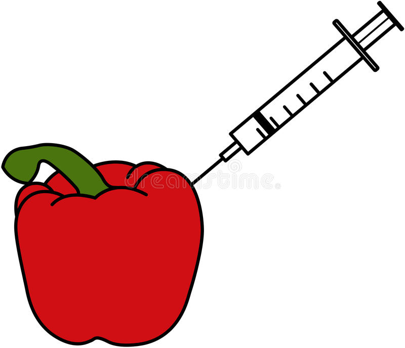 Pesticides - A Syringe Sticking into A Red Pepper. An illustration of a red pepper which has a syringe being put into it royalty free illustration