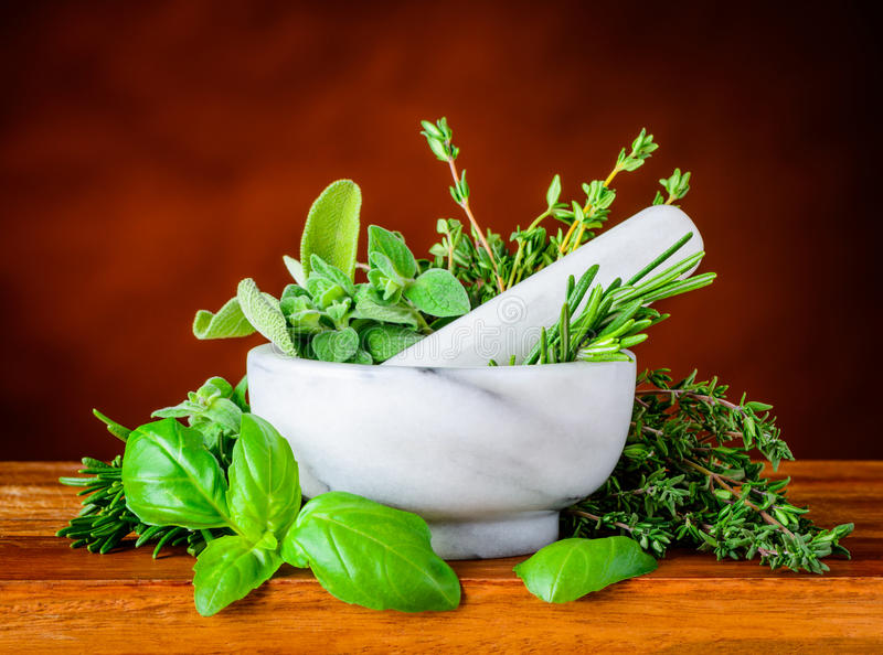 Pestle and Mortar with Green Basil, Mint and Rosemary stock image