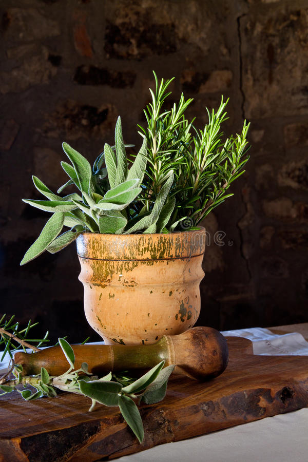 Pestle and mortar with herbs royalty free stock image