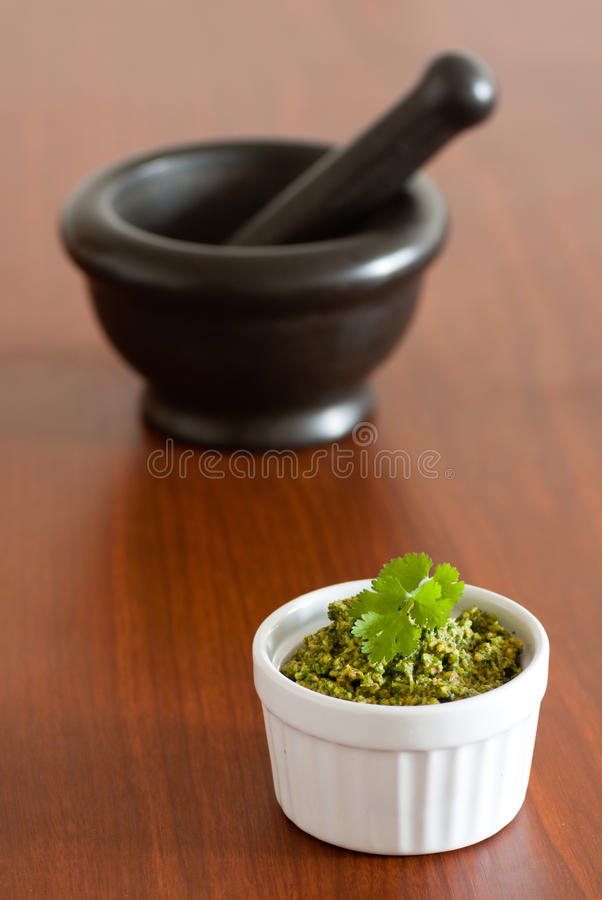 Pesto do Cilantro imagem de stock royalty free