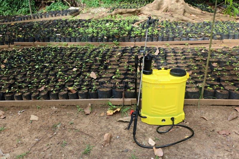 Pestycyd natryskownica w ogrodnictwie i pepinierze obraz royalty free