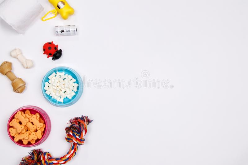 Pet accessories, food and toy on white background. Flat lay. Top. View stock images