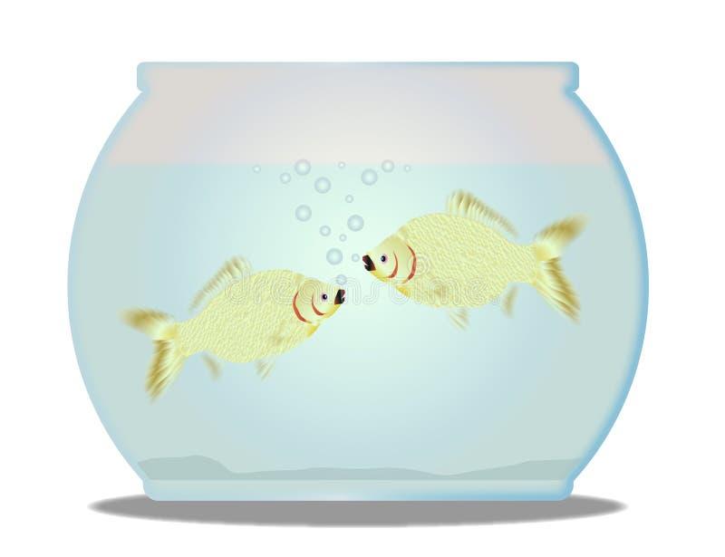 Pet a bacia do peixe dourado com 2 peixes sobre um fundo branco ilustração stock